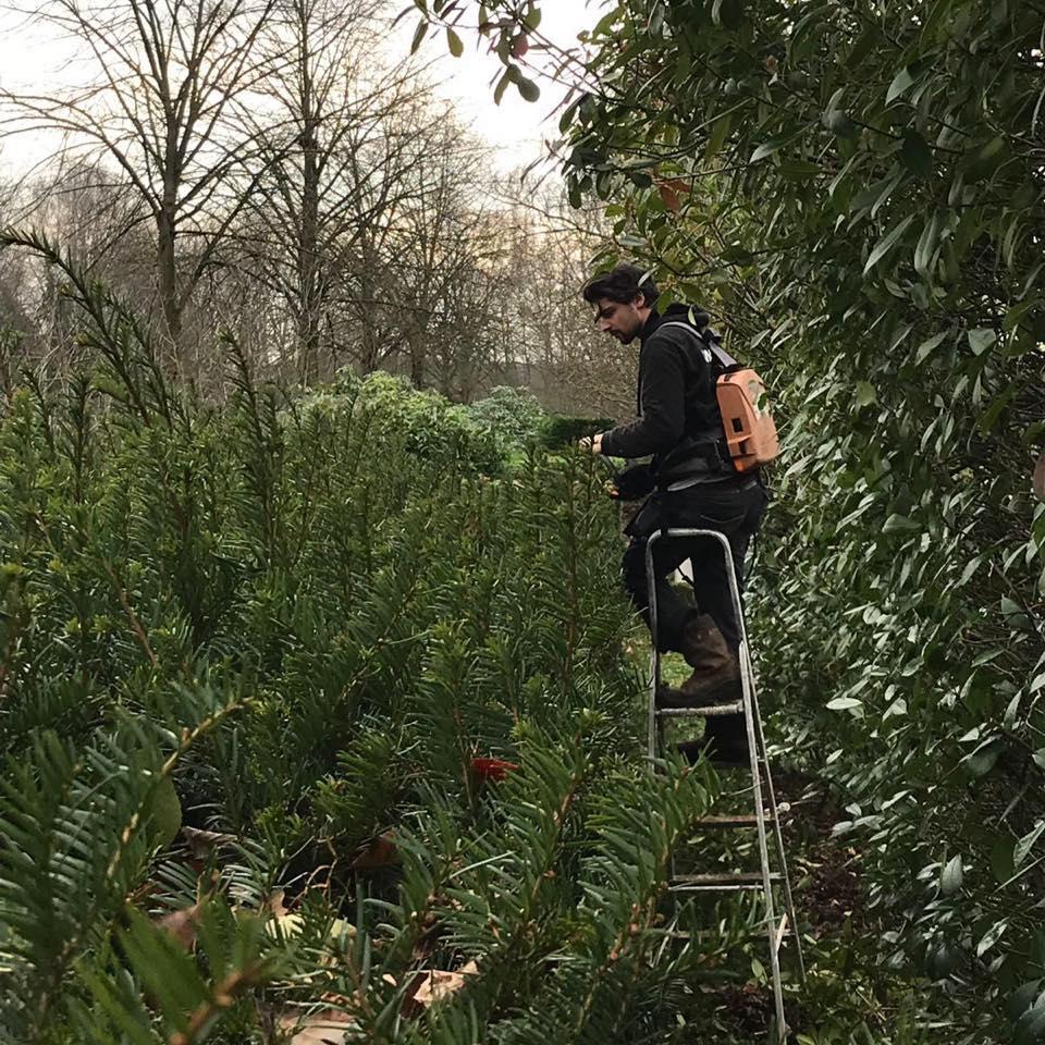 Maurits Garden – Portfolio – Tuinaanleg – bestrating oprit – Tuin Onderhoud 18
