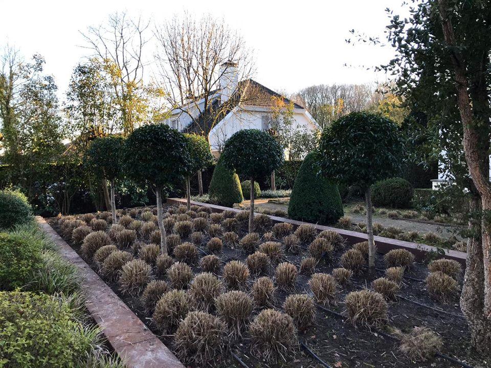 Maurits Garden - Portfolio - Tuinaanleg - Tuin Onderhoud